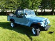 1981 Jeep Jeep CJ factory stripes